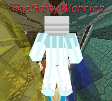 TheSaltyWarrior